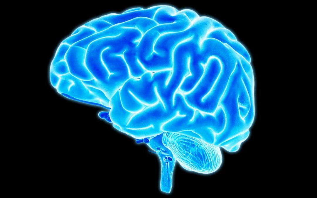 Running your brain